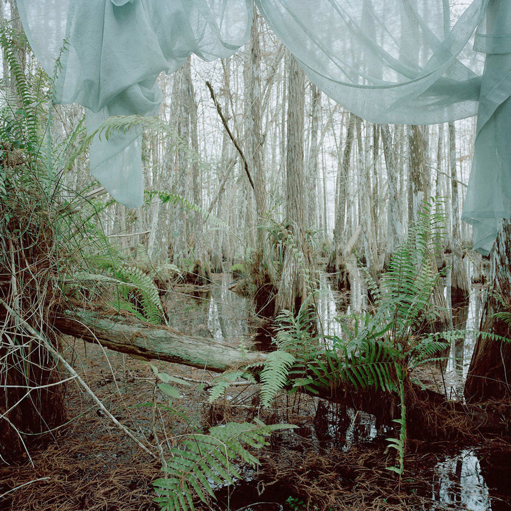 Untitled #3 (Marjory's World) , 2012 archival pigment print 40 x 40 inches, edition of 5 + 2 AP 30 x 30 inches, edition of 5 + 2 AP