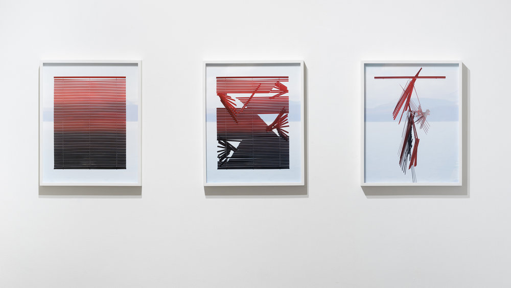 Through Looking 33.1 ,  Through Looking 33.2 , and  Through Looking 33.5  each: 2018, archival pigment print 20 x 16 inches (unframed), edition of 3