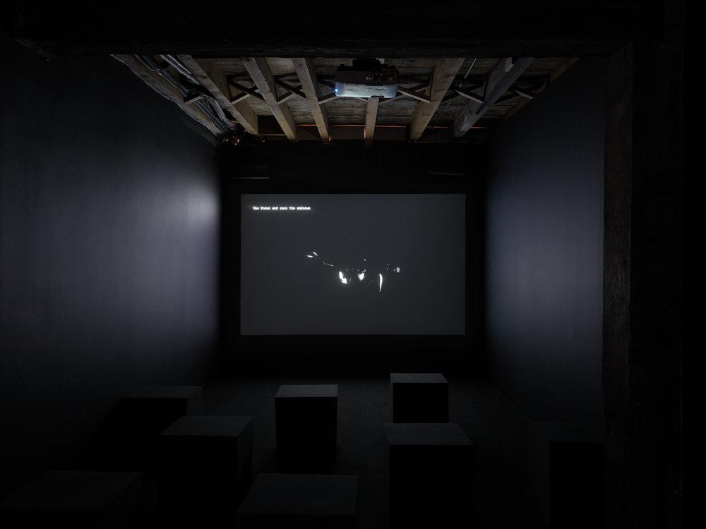 Morehshin Allahyari video in  Refiguring Binaries  at Pioneer Works, New York
