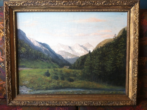 Landscape of Meadows and Mountains