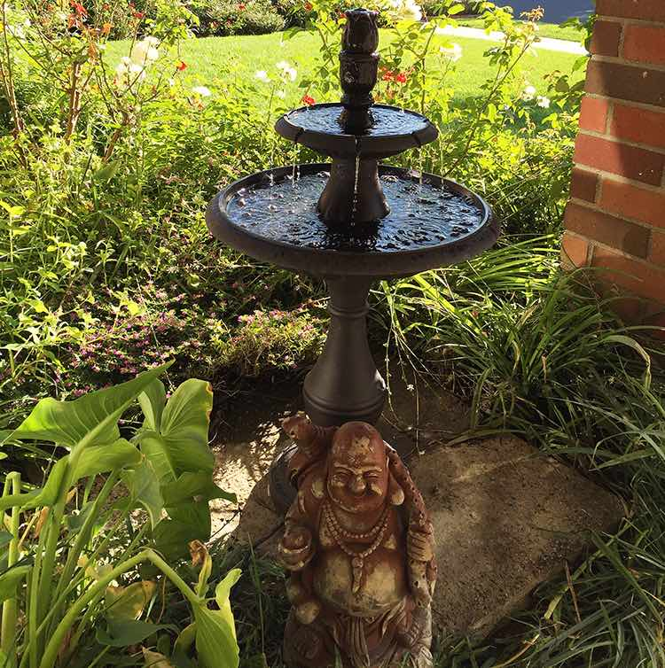 Buddha and the water feature