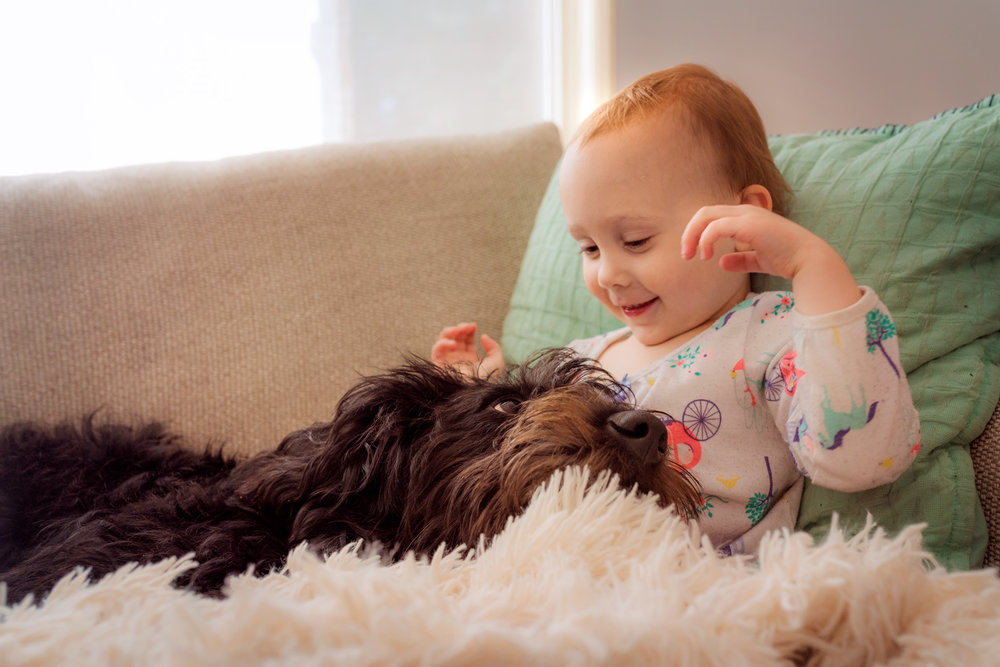 day 5 {morning doggy snuggles}