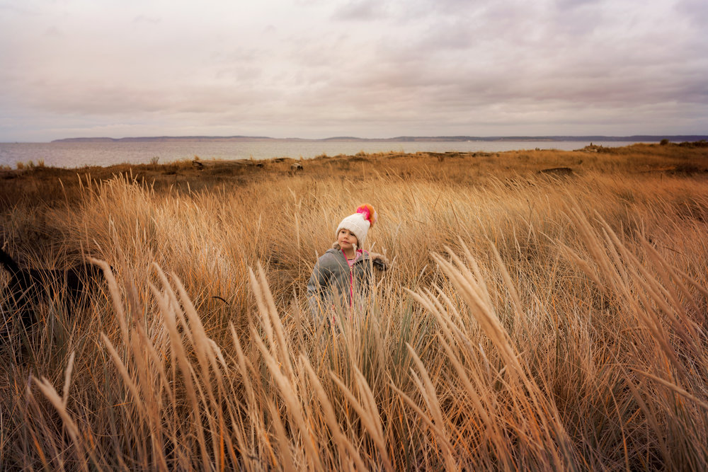 day 23 {in the tall beach grass}