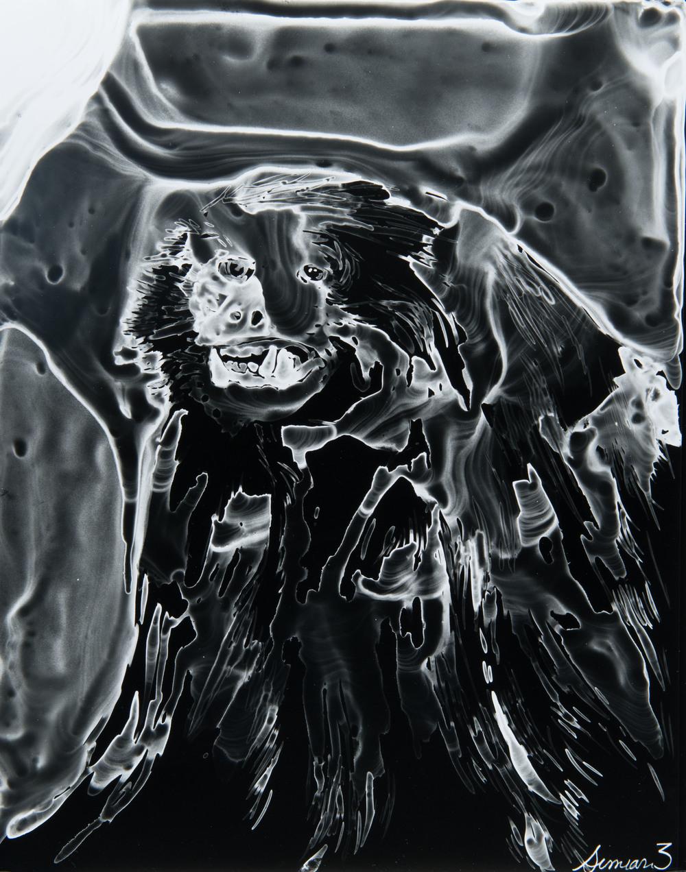 Siman 3  2013 Cliché-verre print, 14 x 11 inches