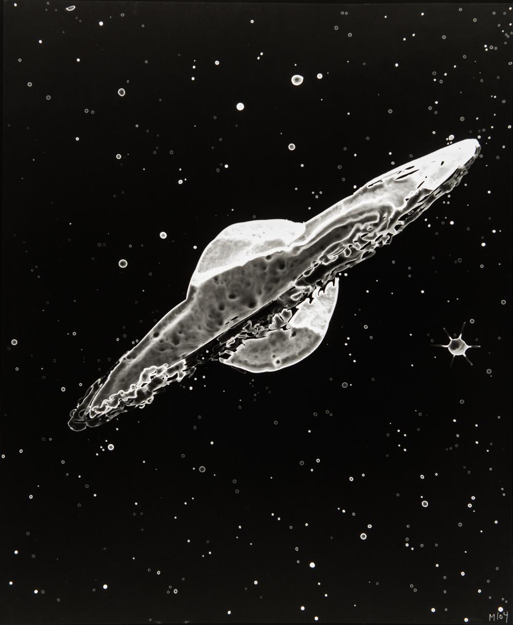 M104, 2013, cliché-verre,17 x 14 inches