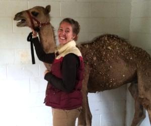 Karen camel.jpg