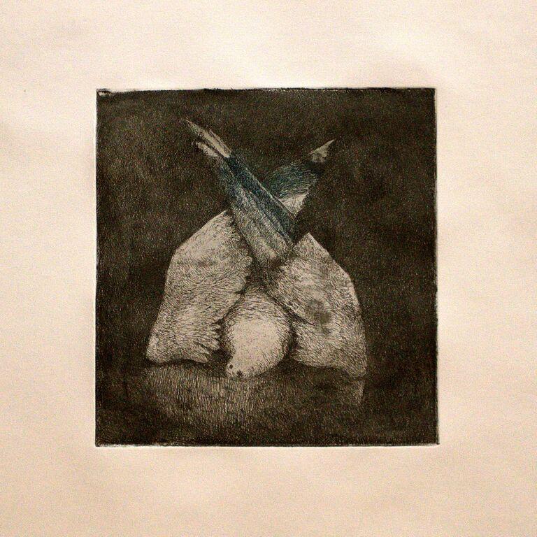 Tayfun Gülnar , Dead Bird,  2014(etching)