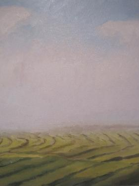 Hannah Sessions ,  Early Morning Fog With Hay Down  (oil on canvas)