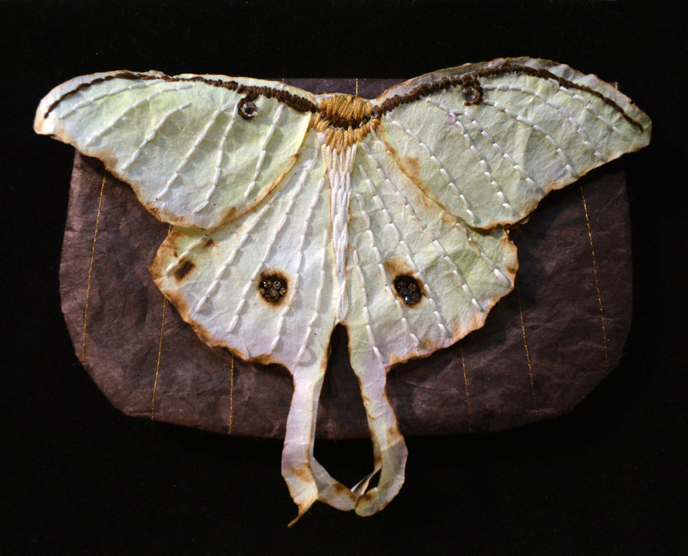 Emily Chase ,  Saturniidae Clutch , 2014 ( Artist Website ) Stitched, burned and embroidered paper, watercolor, Swarovski crystals