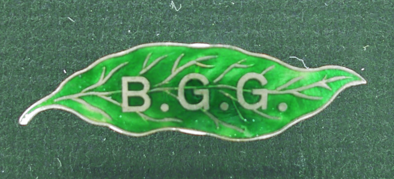 Enamelled green leaf-shaped Blue Gum Girls badge originally worn by Una Reynolds nee Anderson   Berrima District Museum Acc ID: 1406  Donated by Miss Nancy Reynolds, daughter of Una Reynolds