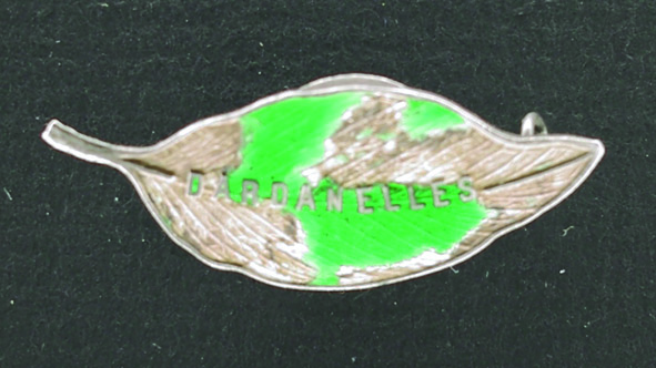 Silver gum leaf brooch with green enamelled map of  the Dardanelles. On the back is a small round frame for  a photo. Ethel Tomley's brother John was killed at Gallipoli in August 1915.   Berrima District Museum Acc ID: 2646.16  Donated by Margaret Roberts