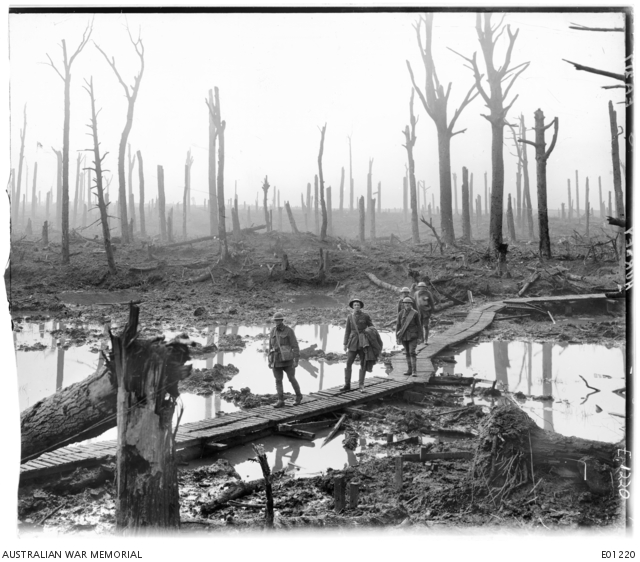 Five Australians, members of a field artillery brigade, passing along a duckboard track over mud and water among gaunt bare tree trunks in the devastated Chateau Wood, a portion of one of the battlegrounds in the Ypres salient. Left to right: 34158 Gunner (Gnr) James Macrea Fulton, 110 Battery, 10th Field Artillery Brigade; Lieutenant Anthony Devine; Sergeant Clive Stewart Smith. It has also been claimed that the third soldier from the left is 34451 Gnr Hubert Lionel Nichols with his brother 25180 Gnr Douglas Roy Nichols, immediately behind. The Nichols brothers both served in the 110th Howitzer Battery. All the identified men in this group served in 4th Australian Division artillery units. The last man in the group is unknown.  Belgium: Western Front (Belgium), Menin Road Area, Chateau Wood. 29 October 1917.