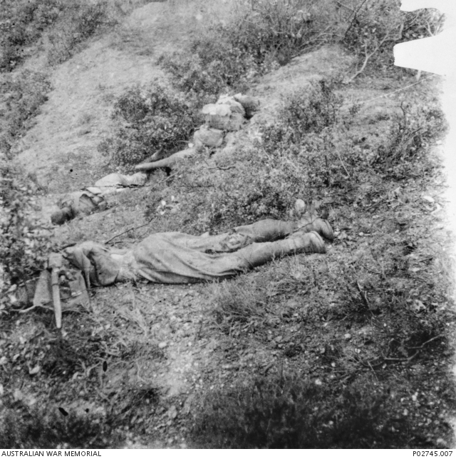 Coming across a group of Australian dead on the Anzac slopes, Charles Ryan recorded the sad scene with his camera. Still wearing packs, these men were killed either during the landing in April or in a subsequent attack. Their rifles and ammunition have already been taken, possibly by their own troops or by the Turks.