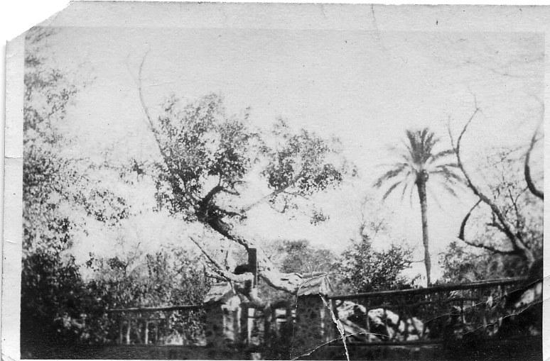Egypt 7 1915