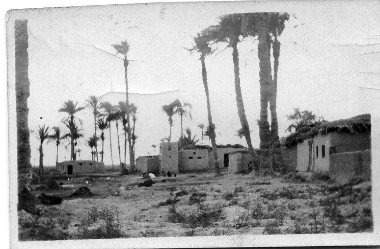 Tel el Khebir Jan 1916