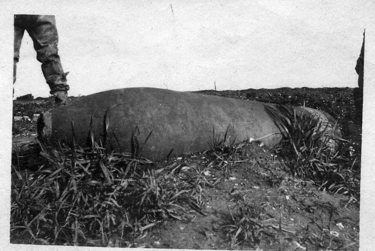 Delville Wood Dud Hun 12 inch shell