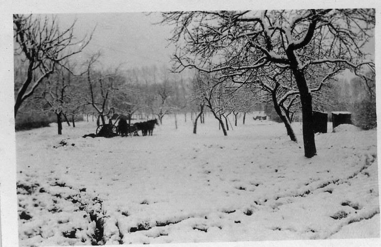 Winter 6 1916
