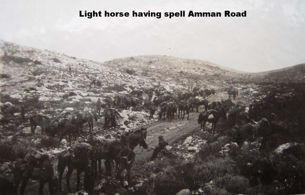 Light horse having spell Amman Road C.jpg