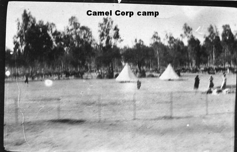 Camel Corps camp.jpg