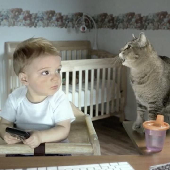 E-Trade / Baby Quits
