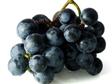1233862_organic_grapes.jpg