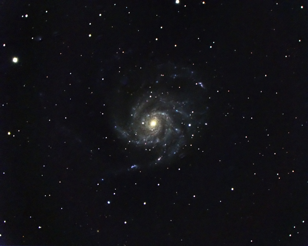 Pinwheel Galxy (M101) with Supernova