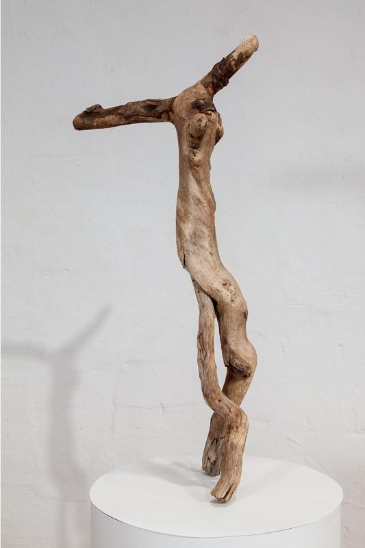 Jester Newfoundland driftwood 60 x 30 x 15 cm, 2008 - 09