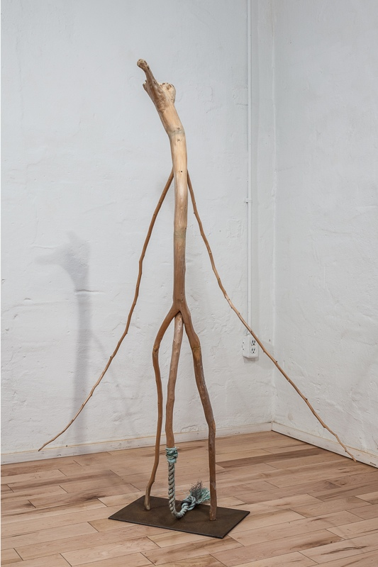 Tail Between Legs  Lake Ontario driftwood 148 x 90 x 70 cm,  2008 – 10