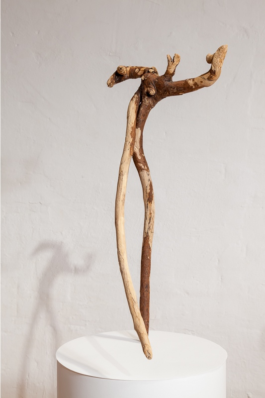 Tenor Newfoundland driftwood 60 x 30 x 15 cm, 2008 - 09