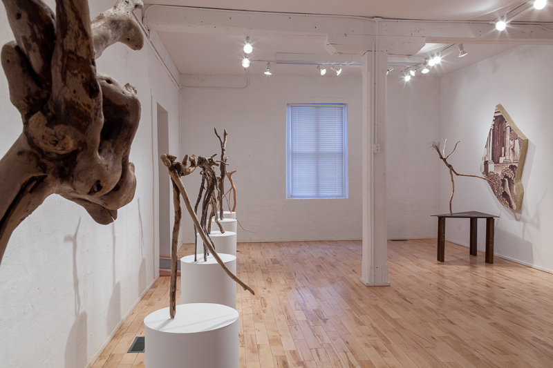Driftwood Assemblages, [Installation view]