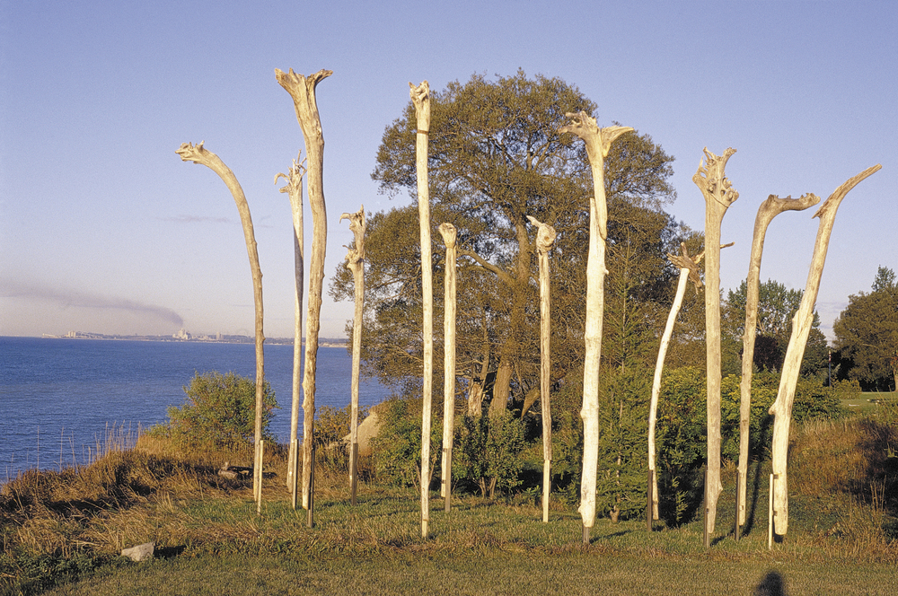 Cliff Sentinels, 2003  7 meter diameter circle of 12 driftwood inverted, re-imagined tree trunks, 5.5 meters tall in steel braces.Installation on Lake Ontario cliff