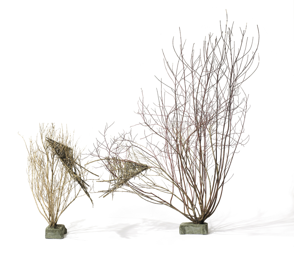Cradled Youth,  2000 - 2005 Forsythia and dogwood branches and bushes, cement 210 x 240 x 90 cm