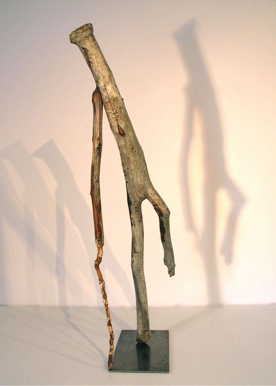 Walks With Cane, 2011 - 12 Newfoundland driftwood , 67 x 23 x 20 cm