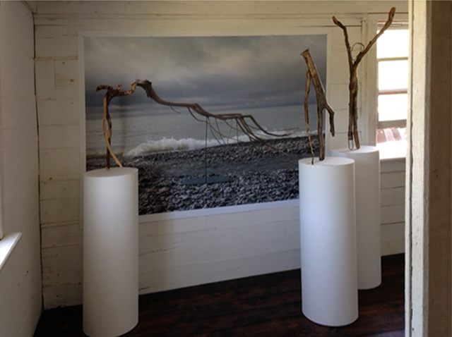 FLOTSOM - Installation View