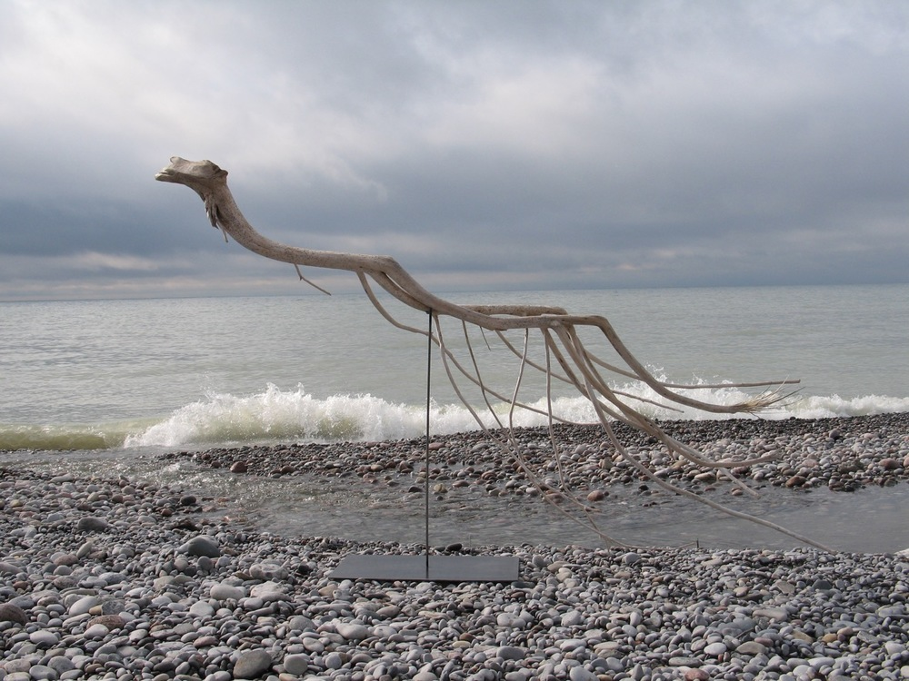 SALLY THURLOW,  Swimmer, 2011-12  Lake Ontario Driftwood, 148 x 240 x 74 cm