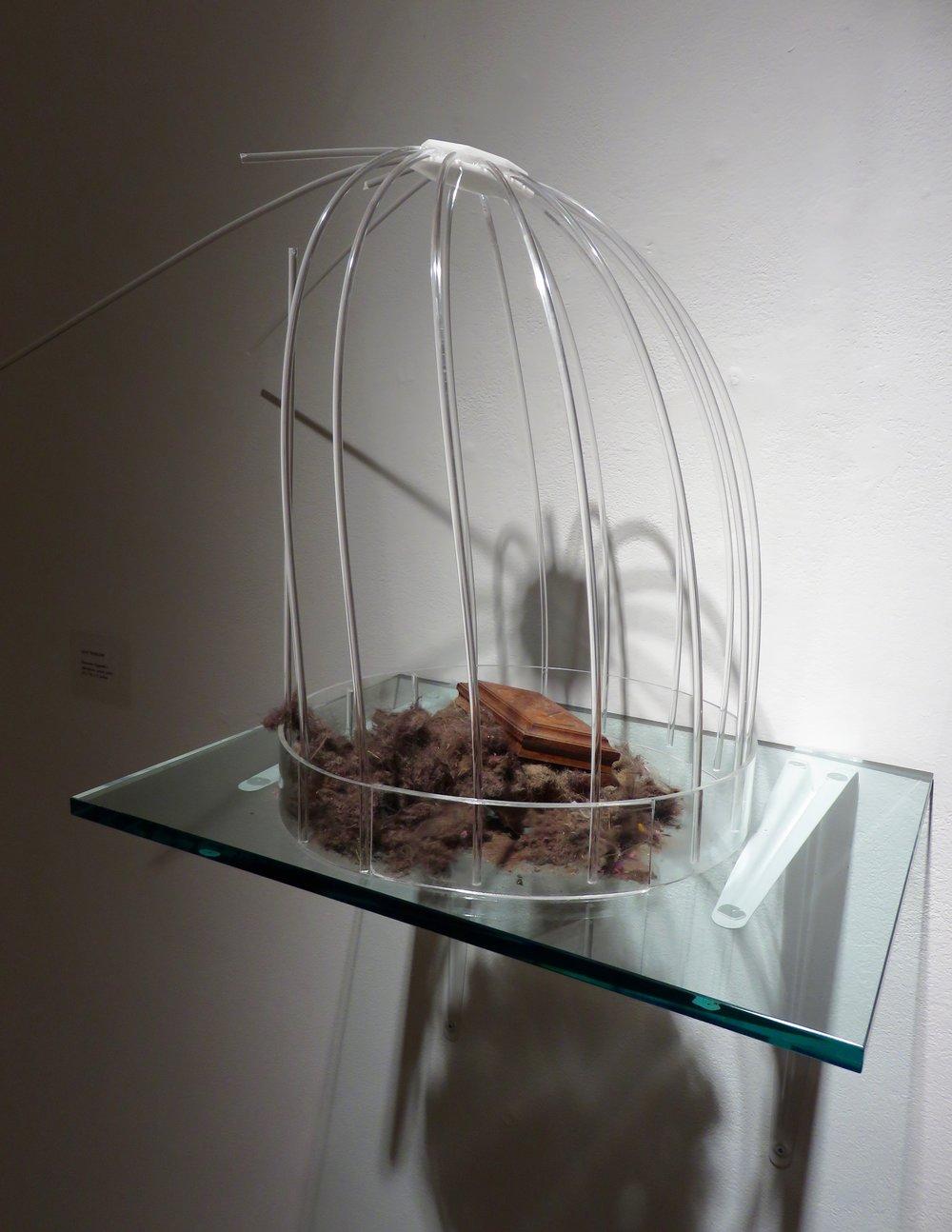 Domestic Vignette I,  2016 Plexiglass, wood,Roomba dirt 22 x 16 x 11 inches