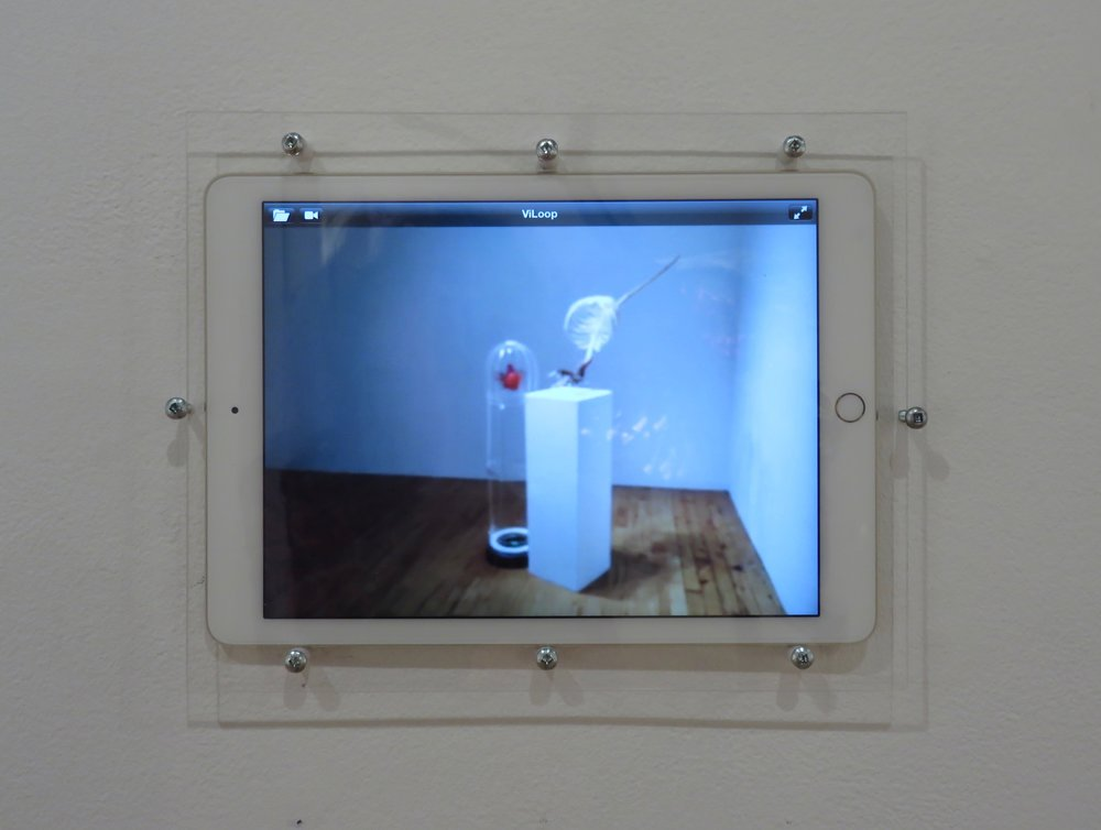 Expectations IV in Motion,  2016 Video, iPad, screws, Plexiglass, 8 x 10 x 1/8 inches