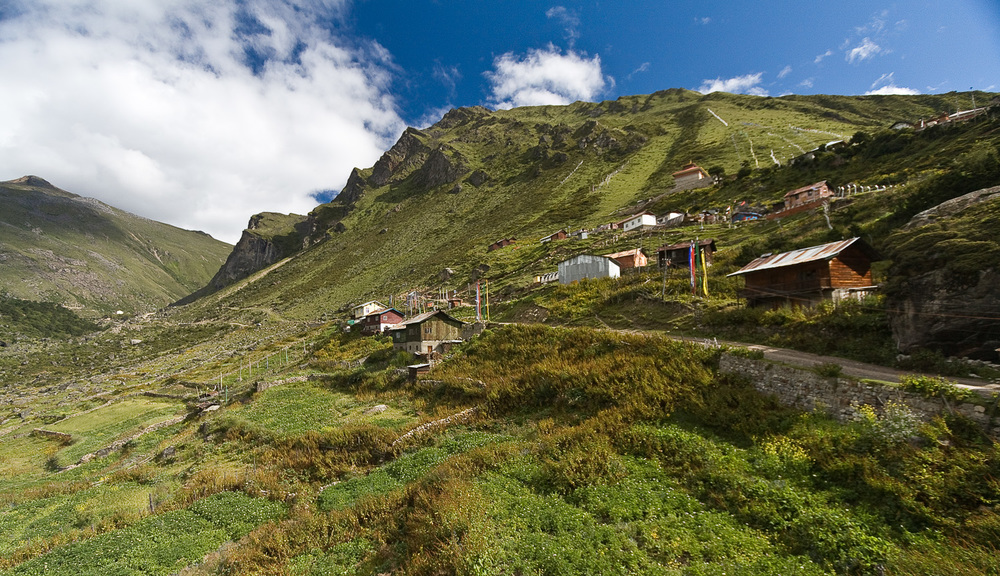 Chopta Valley, Sikkim, India