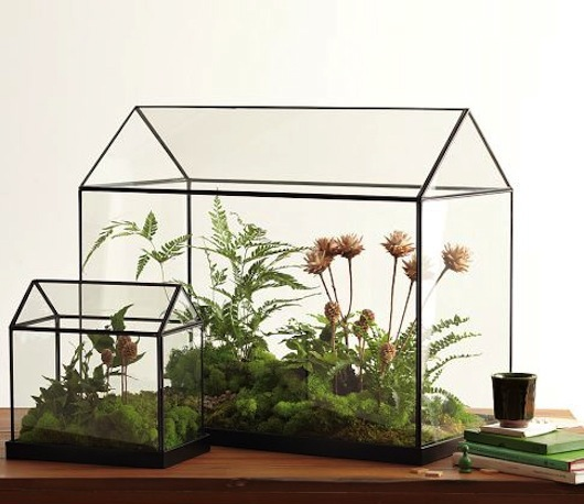 Mini greenhouses and we play diy for kids for How to make a small indoor greenhouse