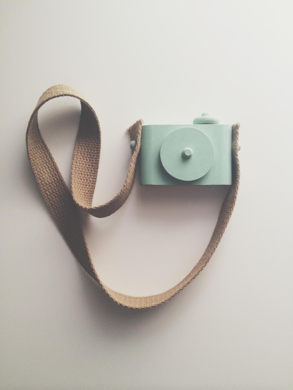 twig camera