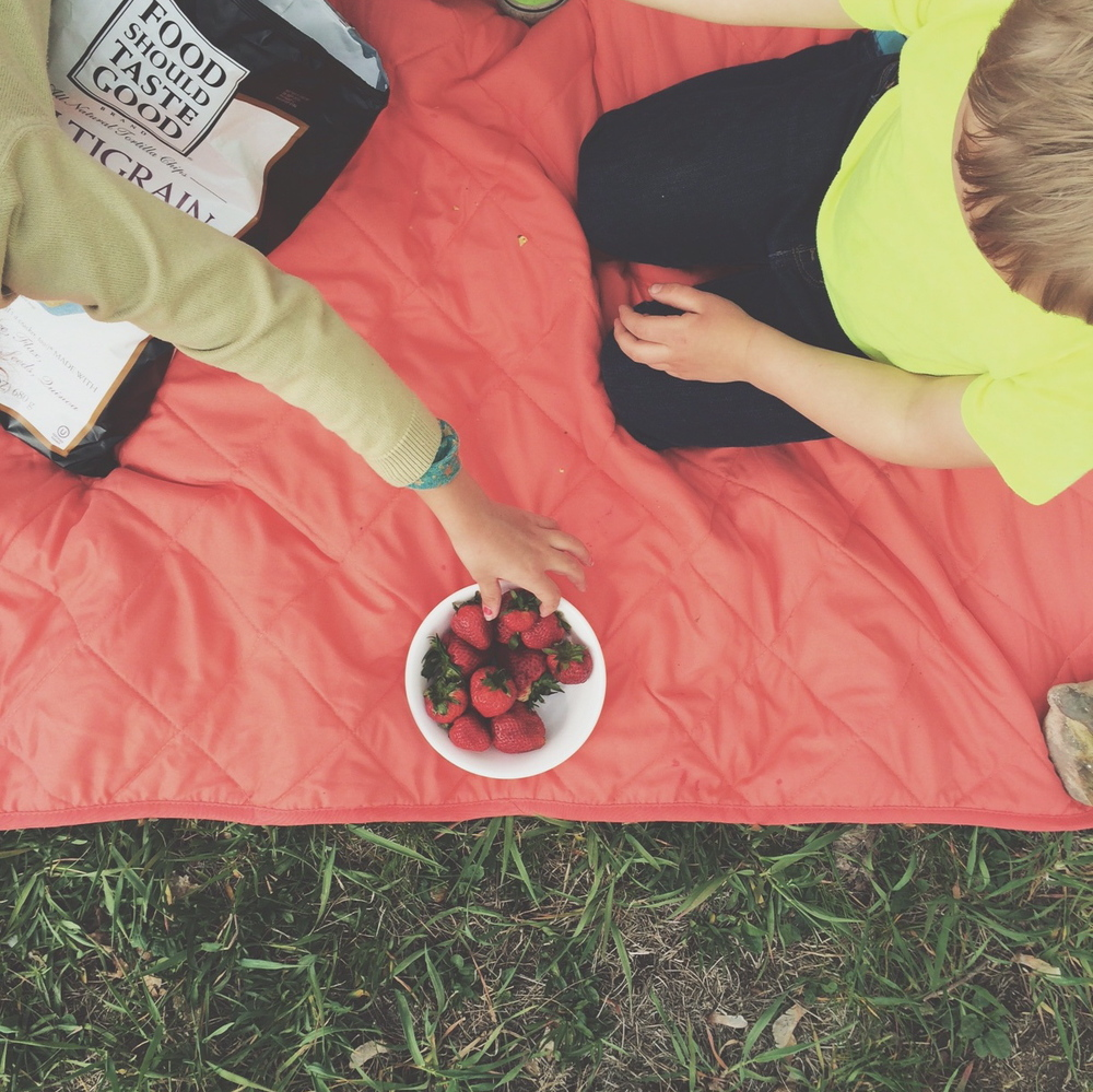 picnic | And We Play