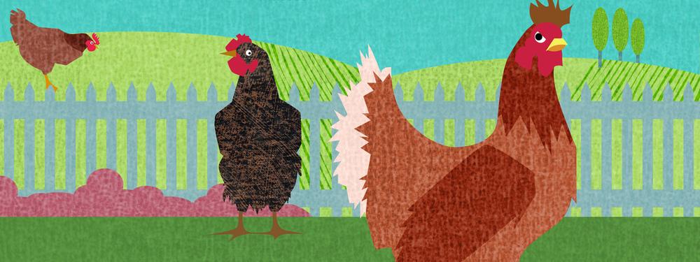 JBethJepson_Chickens.jpg