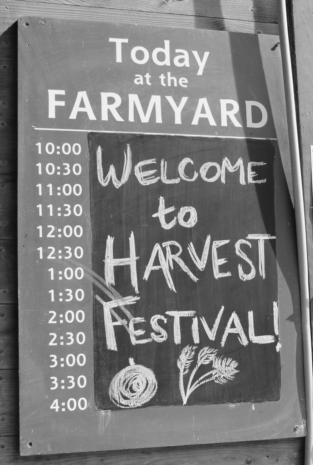 All day harvest celebrations!