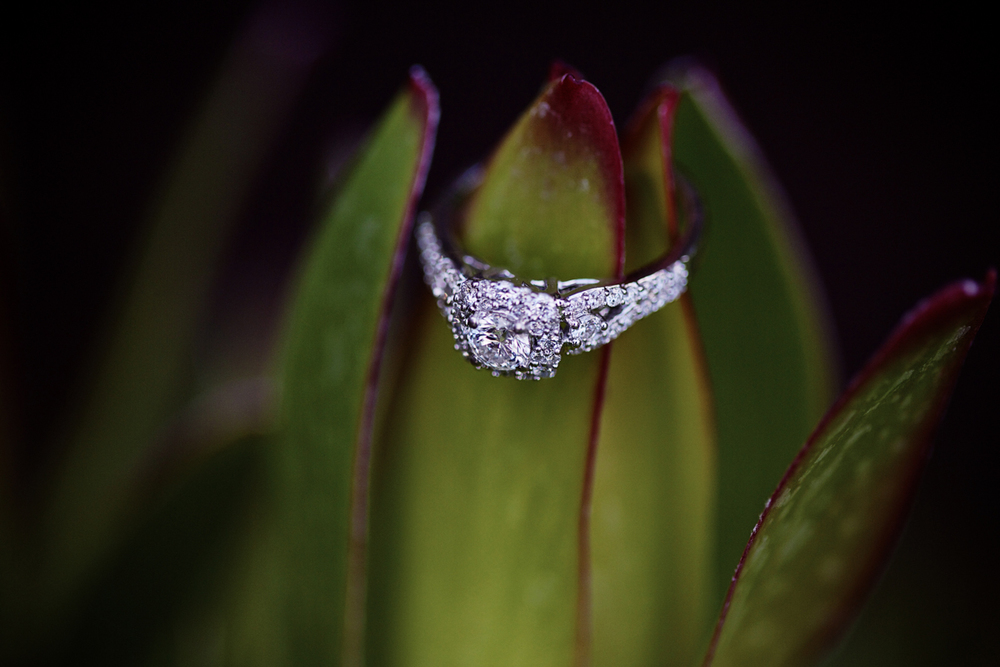 marie-andrew-engagement-photography-san-diego-balboa-park-lokitm-010.jpg