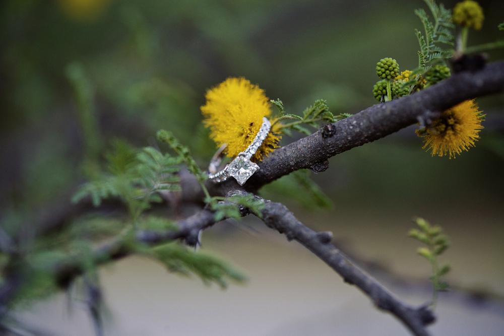 mony-john-irvine-regional-park-lokitm-engagement-photography-002.jpg
