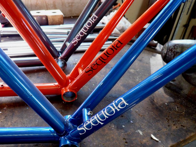 SequoiaMain800.jpg