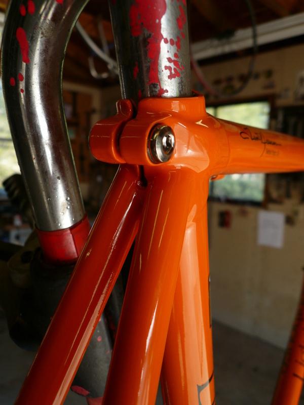 orange max 006.jpg