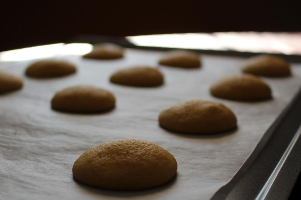 unglazed cookies.jpg