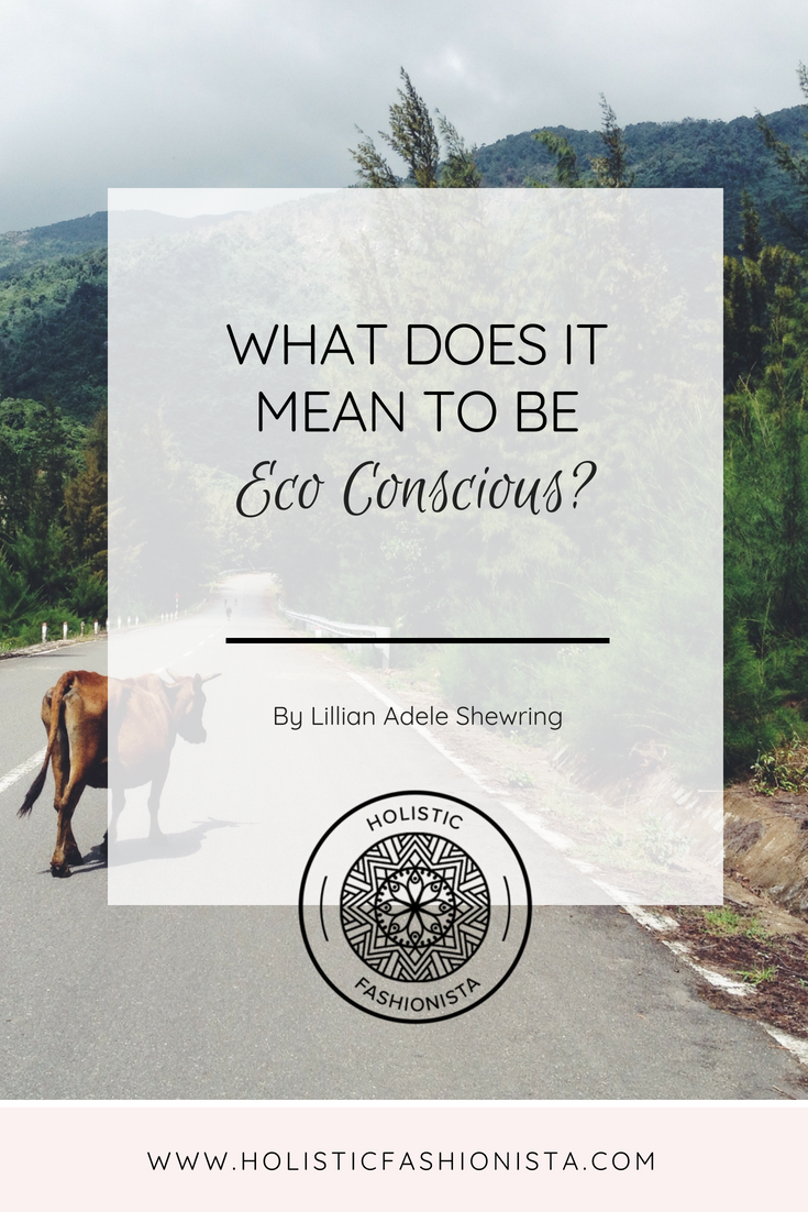 What Does it Mean to be Eco Conscious?