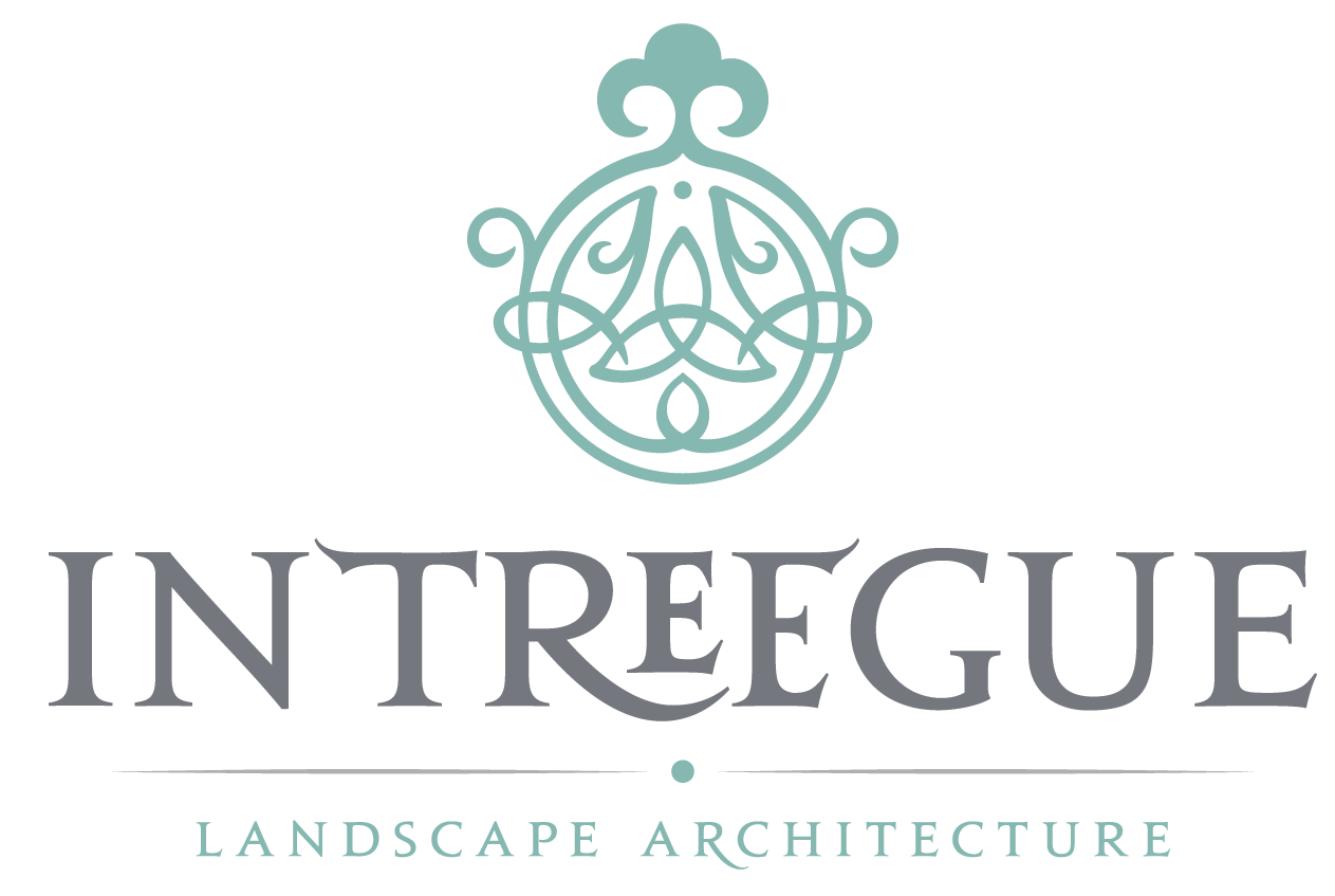 Intreegue Design